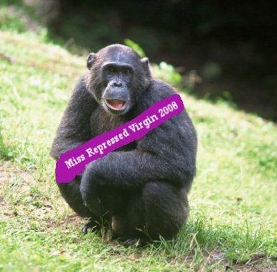 Gtotem_chimpanzee_2
